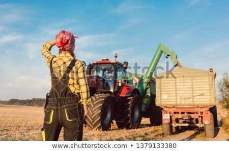 Farm woman monitoring progress of the harvest on site Stockfoto © Kzenon