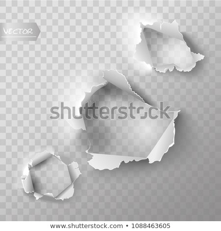 White Blank Sheet Of Curled Paper Isolated Transparent Backgroun Stock photo © barbaliss