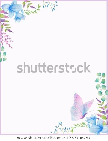 Watercolor illustration of freesia and eucalyptus border Stock photo © Natalia_1947