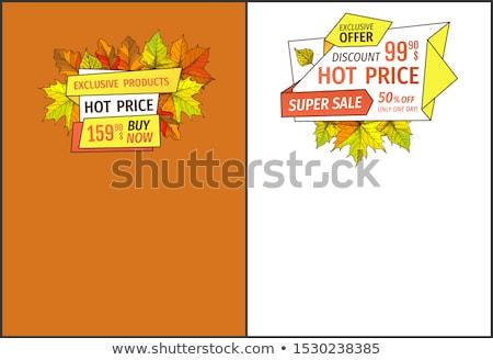 Exkluzív ősz termékek vegye meg most szuper ár Stock fotó © robuart