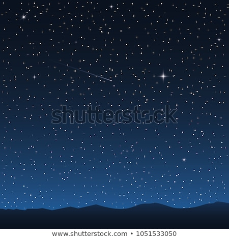 Dark starry night landscape with stars and moon vector Stock photo © MarySan