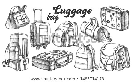 Collection Of Different Luggage Ink Set Vector Stock photo © pikepicture