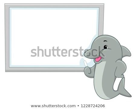 Delfin tanulás tábla illusztráció tábla tanít Stock fotó © lenm