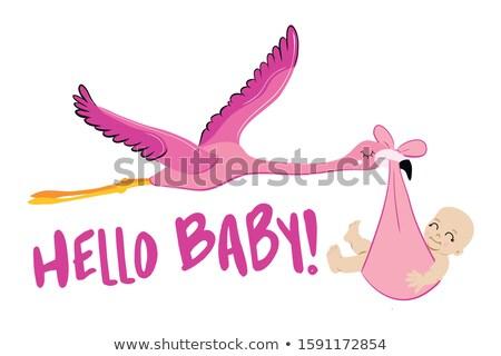 Hallo Baby Dusche Illustration Flamingo Storch Stock foto © Zsuskaa