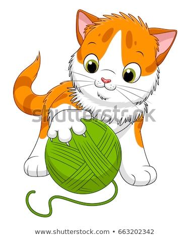 spotted kitten cartoon animal character Stock photo © izakowski