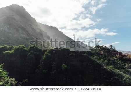 beyaz · köpüklü · dalgalar · plaj · siyah · volkanik - stok fotoğraf © ruslanshramko
