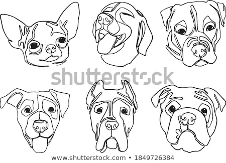 собака современных линия дизайна стиль Сток-фото © Decorwithme