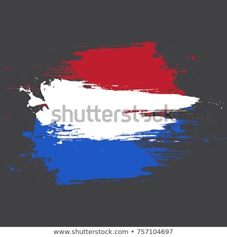 Netherlands flag and hand on white background. Vector illustration Stock photo © butenkow