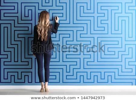 blue strategy in labyrinth Stock photo © marinini