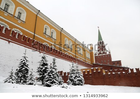 クレムリン モスクワ ロシア ツリー 戦争 鋼 ストックフォト © Paha_L