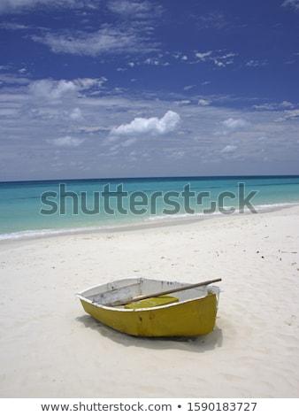 Tropisch strand roeiboot palmboom zee Thailand Stockfoto © smithore
