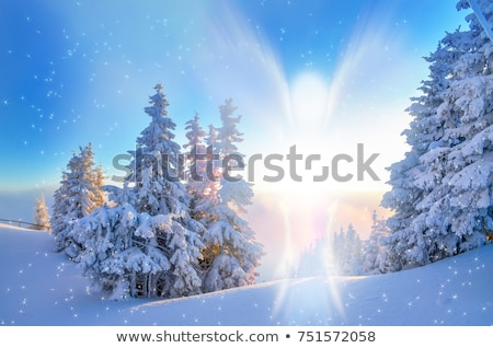 kış · melek · kar · taneleri · güzel · sarışın - stok fotoğraf © dolgachov