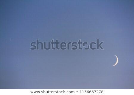 Albero silhouette cielo inverno notte Foto d'archivio © suerob
