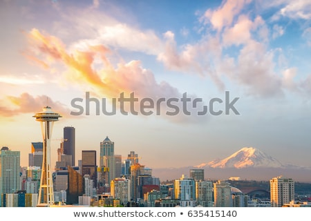 Seattle · sziluett · éjszaka · ikonikus · nyugat - stock fotó © aremafoto