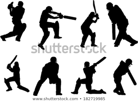 Cricket Players Silhouettes set stock photo © Kaludov