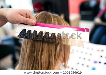 profesional · femenino · peluquero · color · cliente - foto stock © candyboxphoto
