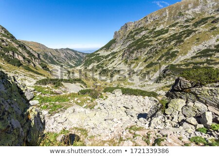 Mountains And Ski Slopes In The Summer Zdjęcia stock © stoyanh