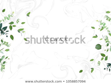 Vector fondos hierbas siluetas flores Foto stock © Vg