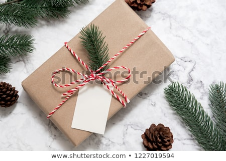 Pine branches with gift tag  Stock photo © Sandralise