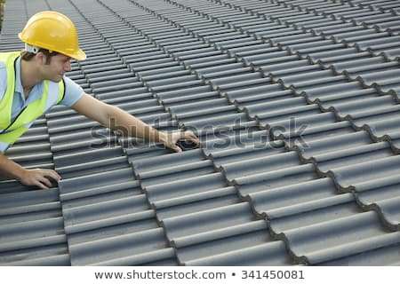 Man holding roof tiles Stock photo © photography33