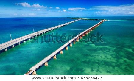 Florida · kulcsok · USA · fa · tájkép · tenger - stock fotó © prill