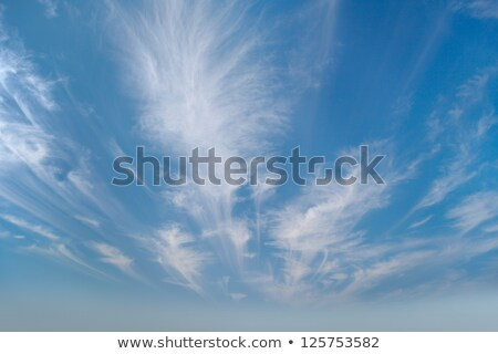 Sky with cirrus clouds photographed by wide angle Stock photo © pzaxe