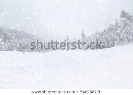 Hiver Voyage blizzard voitures voiture Photo stock © markhayes