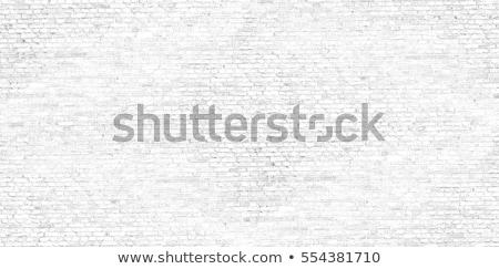 brick wall seamless stock photo © tashatuvango