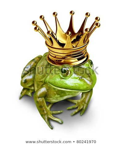 Frog prince with small gold crown Stock photo © Lightsource