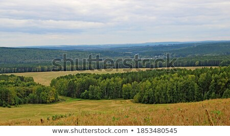 settlement in rural area with fields under blue sky Stock photo © meinzahn