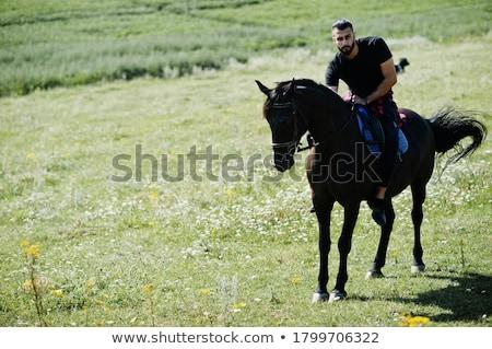 Man paardenrug zonsondergang paard boerderij silhouet Stockfoto © adrenalina