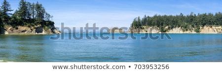 Egyenetlen tengerpart Oregon part tengerpart tenger Stock fotó © Frankljr