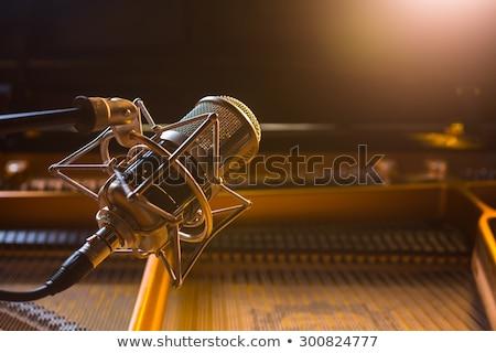 mikrofon · teknoloji · siyah · ses · stüdyo - stok fotoğraf © diabluses