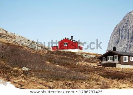 Houten cabine boom architectuur Stockfoto © Sarkao