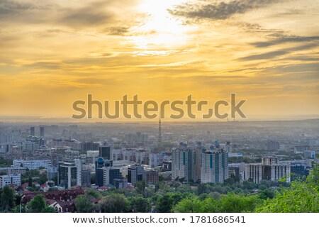 Impression panaromic of Asia city on day Stock photo © xuanhuongho