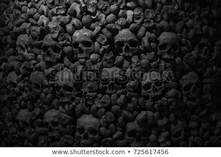 Czaszki ciemne ludzi płótnie noc czasu Zdjęcia stock © cosma