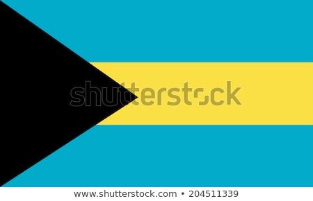 Banderą Bahamas wykonany ręcznie placu projektu Zdjęcia stock © k49red