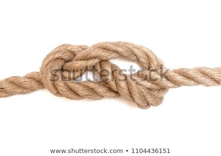 kötél · csomó · izolált · fehér · textúra · tenger - stock fotó © all32