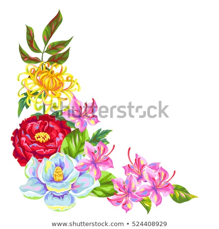 Floral border azaleas and magnolia  Stock photo © Irisangel