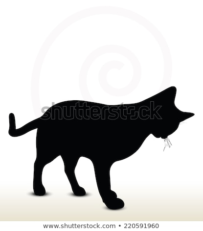cat silhouette in Rubbing Scent  pose Stock photo © Istanbul2009