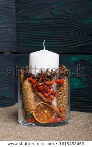 Cepillo montana ceniza hojas bordo otono Foto stock © Valeriy