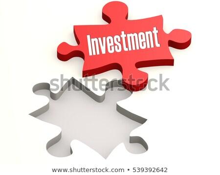 Ganancias texto rojo blanco 3d negocios Foto stock © tashatuvango