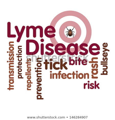 lyme disease medical concept on red background stock photo © tashatuvango