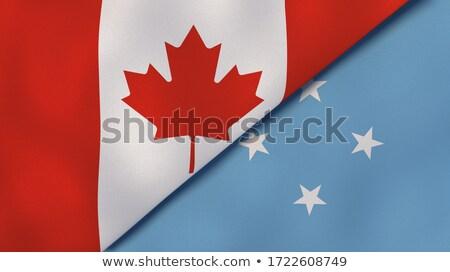 Канада Микронезия флагами головоломки изолированный белый Сток-фото © Istanbul2009