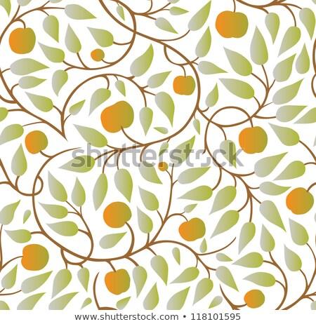 Vecteur modèle pomme arbres Photo stock © freesoulproduction