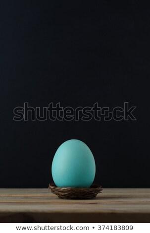 Turkus niebieski jaj mały gniazdo czarny Zdjęcia stock © frannyanne