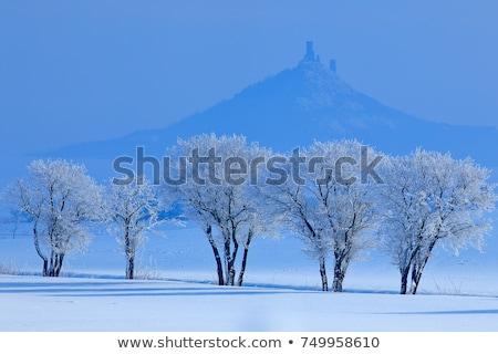 ruins of hazmburk castle ceske stredohori czech republic stock photo © phbcz