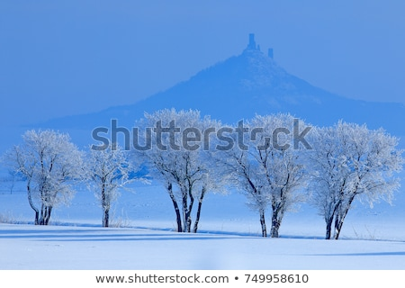 ruins of Hazmburk Castle, Ceske stredohori, Czech Republic Stock photo © phbcz