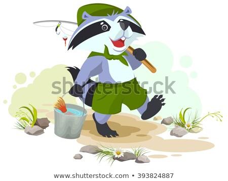 Izci balık tutma rakun kova balık balıkçı Stok fotoğraf © orensila
