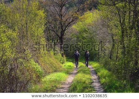 Duas pessoas caminhada branco amor fundo menino Foto stock © bluering